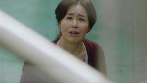 Sinopsis Drama Korea Return Episode 26