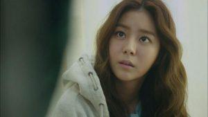 Review Drama Korea Ho Gu's Love